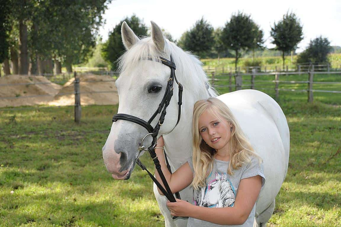 Horse Ownership For Children