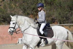Regain Confidence In Horseback Riding