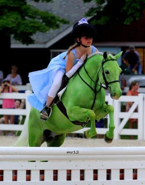 Green Horse Pink Wicked Spurs