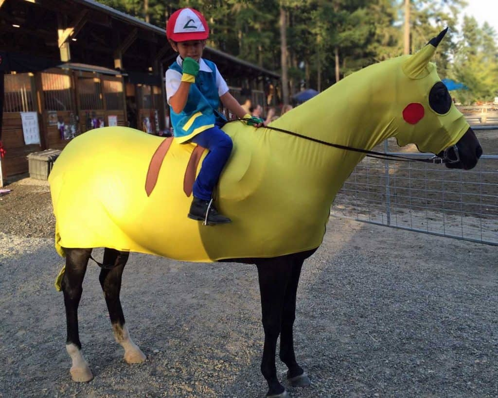 Picachu Horse and rider Maneentail