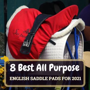 8 Best All Purpose Saddle Pads