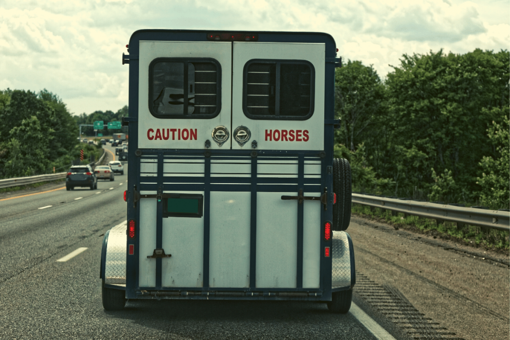 Horse Trailer On Highway