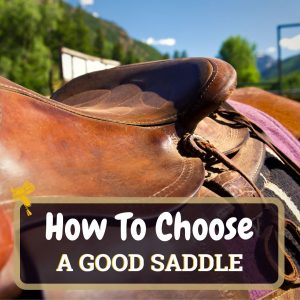How To Choose A Good Saddle Featured
