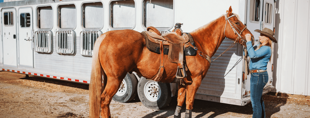 Renting A Horse Trailer