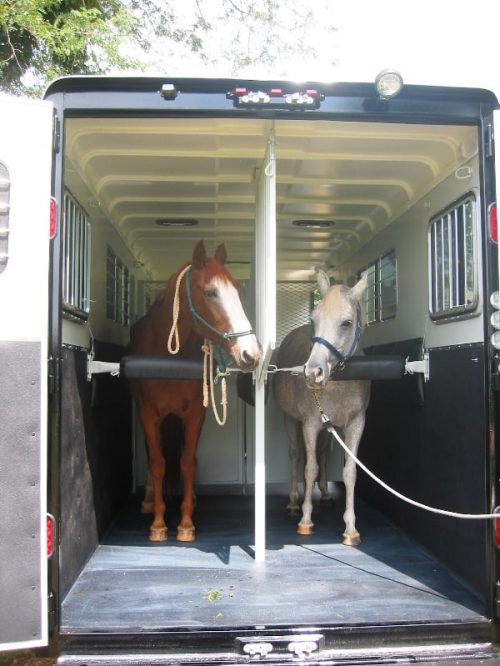 Reverse Load Horse Trailer - Common Horse Trailer Types